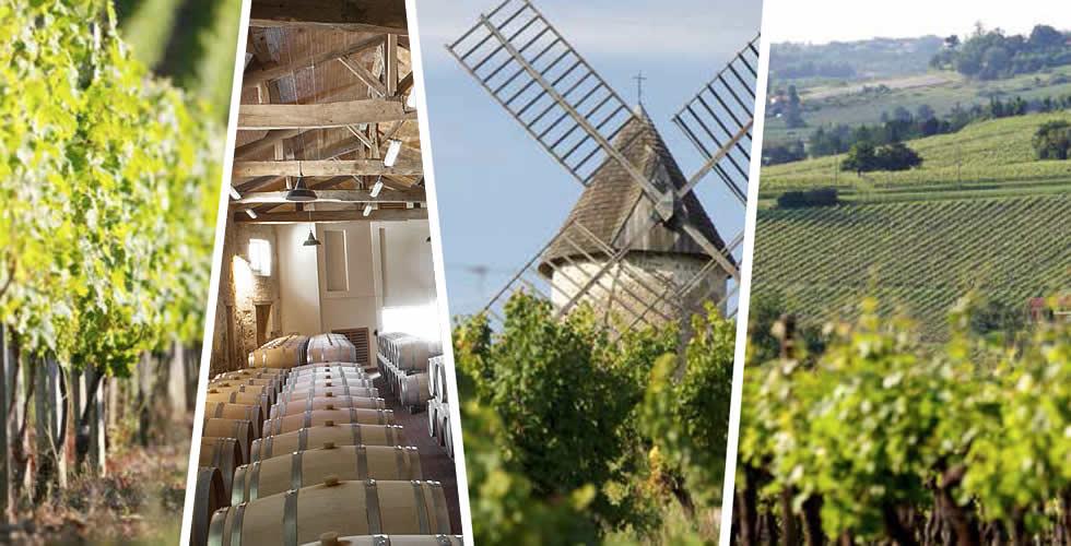 Cadillac Côtes de Bordeaux est l'une des seules appellations du Bordelais ayant l'obligation de mise en bouteille au château