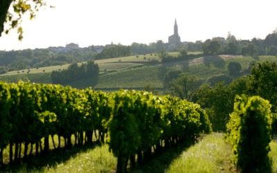 Partez à la découverte des coteaux de Bordeaux…
