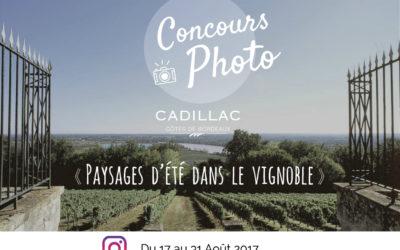 Jeu concours Instagram Paysages d'été dans le vignoble