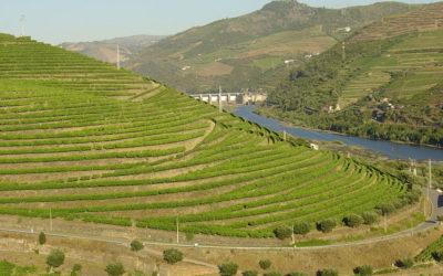 La Région viticole du Haut-Douro à l'UNESCO