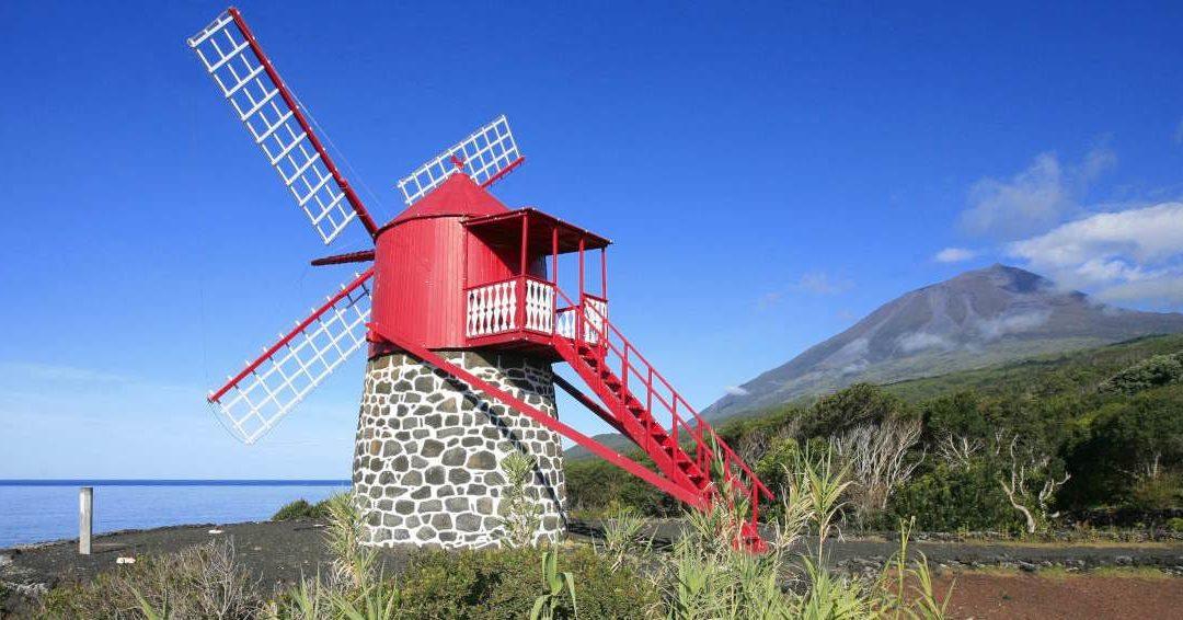 Paysage viticole de l'île du Pico