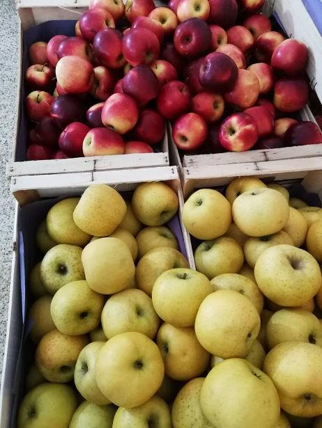 Pomme des producteurs Locaux
