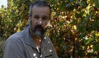 Les vignobles Crachereau, Donzac