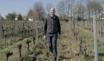 Vignobles Massé, Pompignac